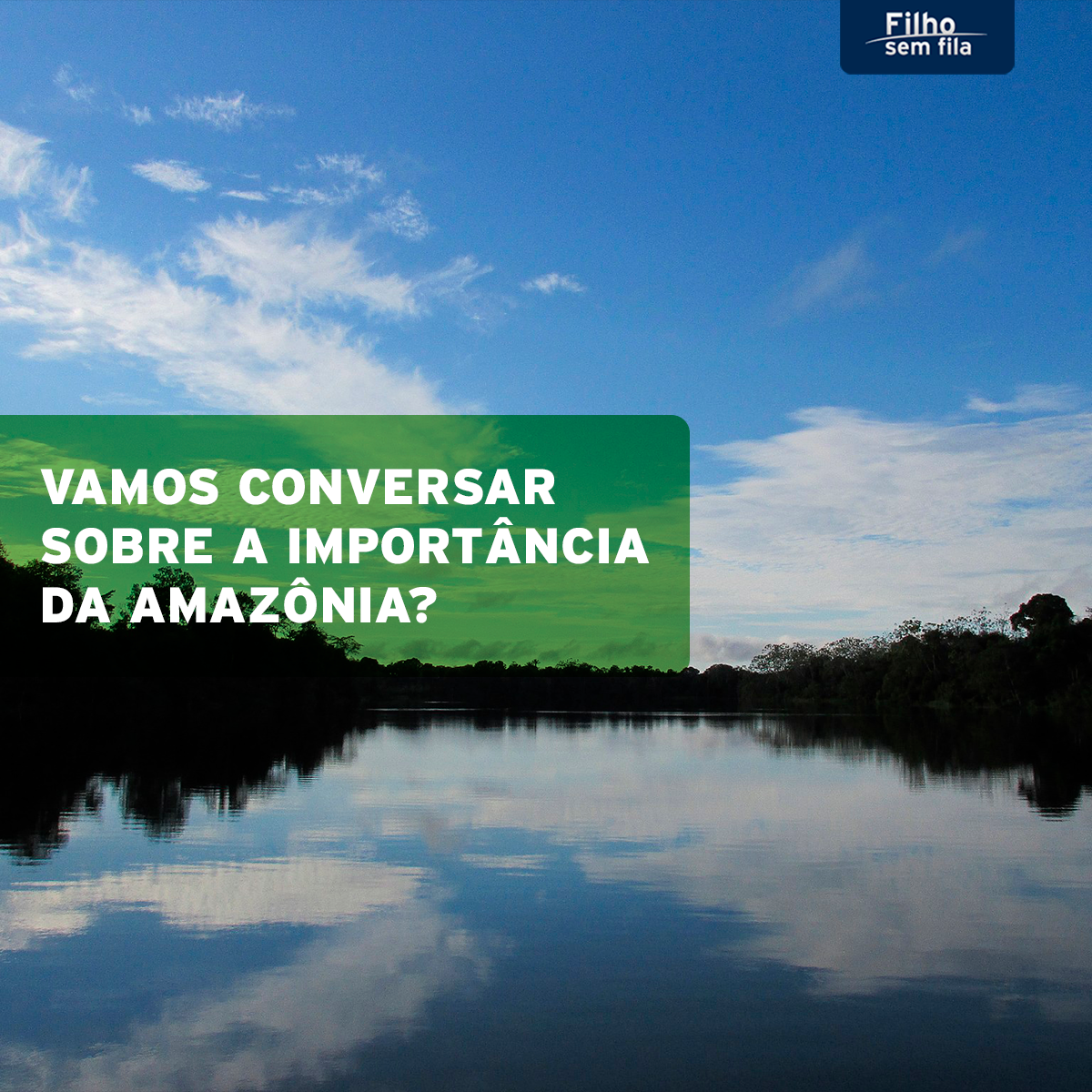 Vamos conversar sobre a importância da Amazônia?